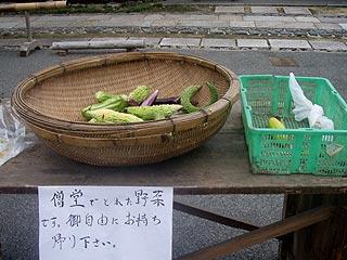 タダの野菜